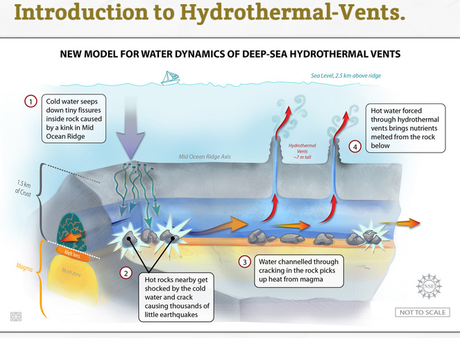 Introduction to Hydrothermal - Marine science